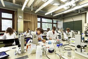 Studierende führen Experimente in einem modernen Labor durch
